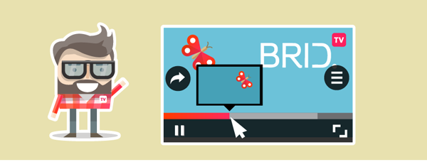 Brid.tv Storyboard Thumbnail Feature